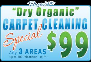 premium dry organic carpet cleaning special - Georgia Jacks carpet cleaning | Atlanta, GA